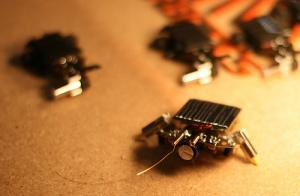 Tiny bots